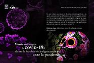 Muerte en tiempos de Covid-19: el caso de la población indígena mexicana ante la pandemia [398]